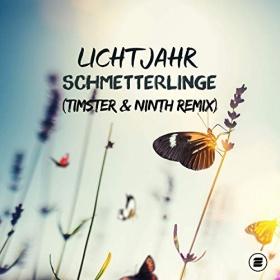 LICHTJAHR - SCHMETTERLINGE (TIMSTER & NINTH REMIX)